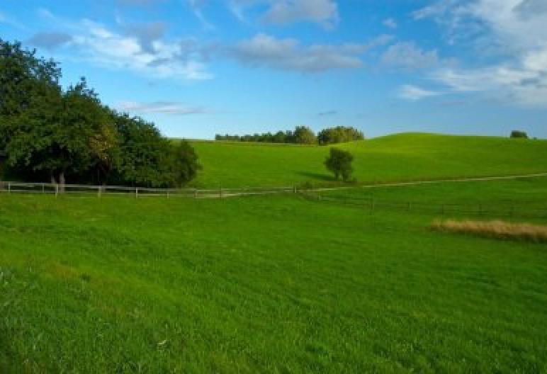 Agroturystyka Skrzeszewo