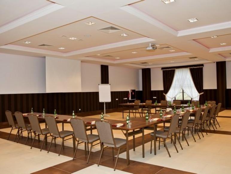 Centrum Konferencyjno-Biznesowe Dwór Dwikozy ***