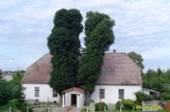 Agrohotel Cyprinus