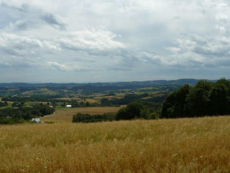 widok z góry Budyń