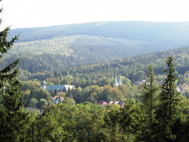 Leśny Gród widok z okna
