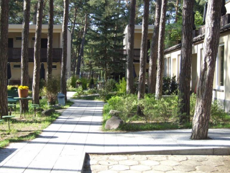 W Sosnowym Lesie Ośrodek Wczasowy