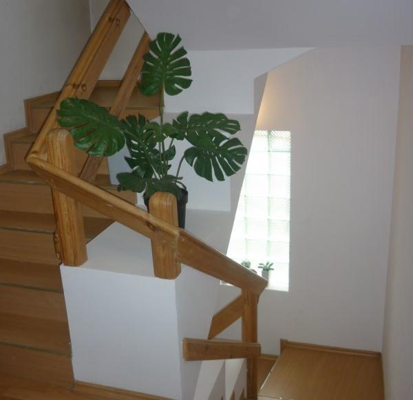 Plowce House - Schody