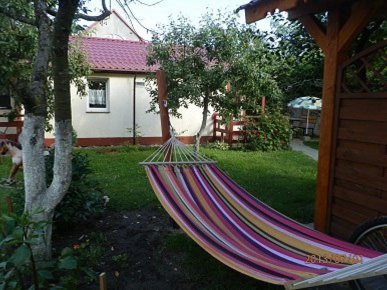 ogród z domkiem w tle