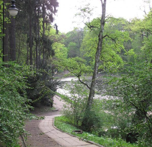 Park Miejski naprzeciw
