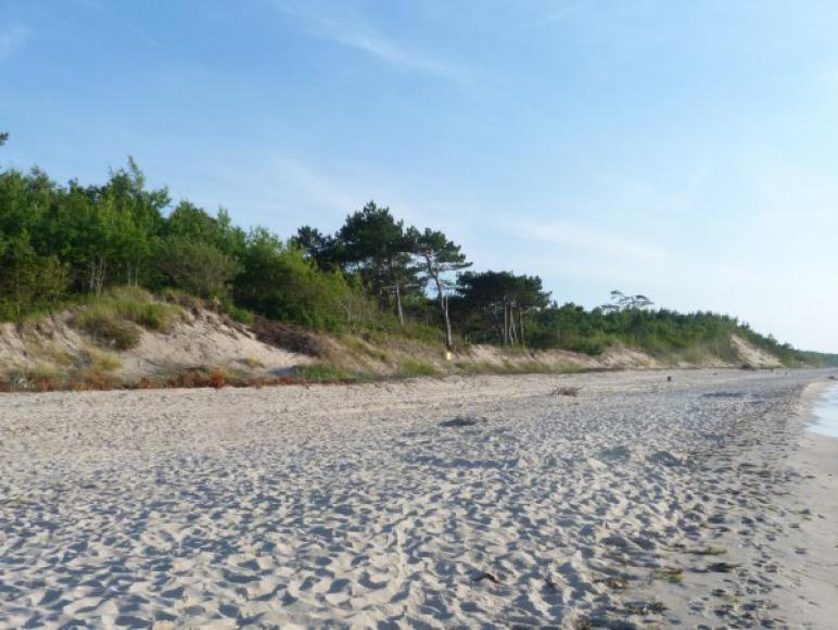 Plaża - 12 min od domu
