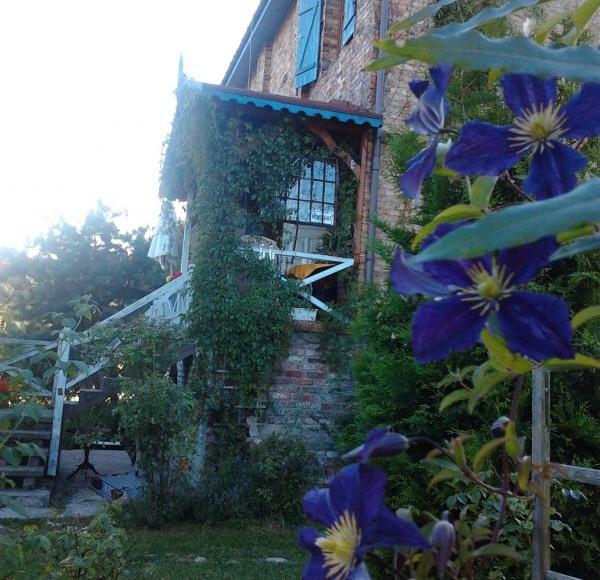 Kwitnacy ogród