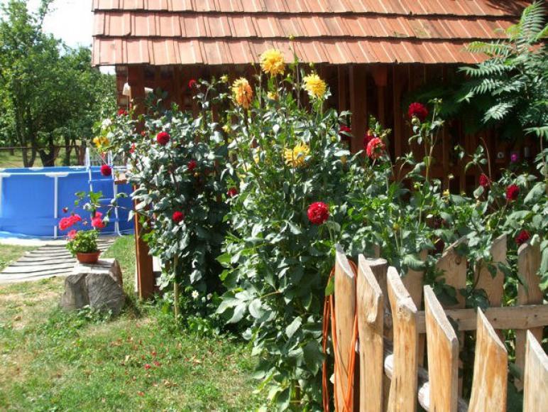 Agroturystyka Napora 32-pokoje z Łazienkami