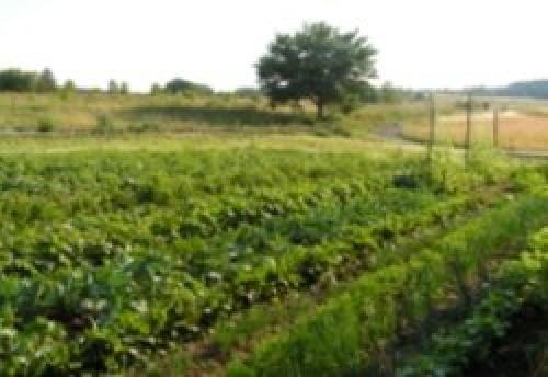 Gospodarstwo Agroturystyczne Powierzówka