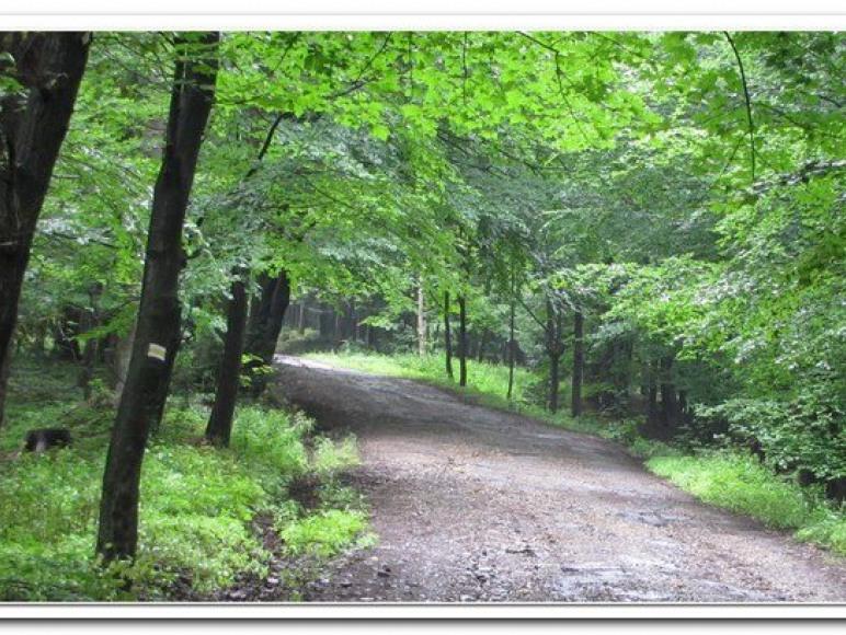 droga na Hrobaczą Łąkę
