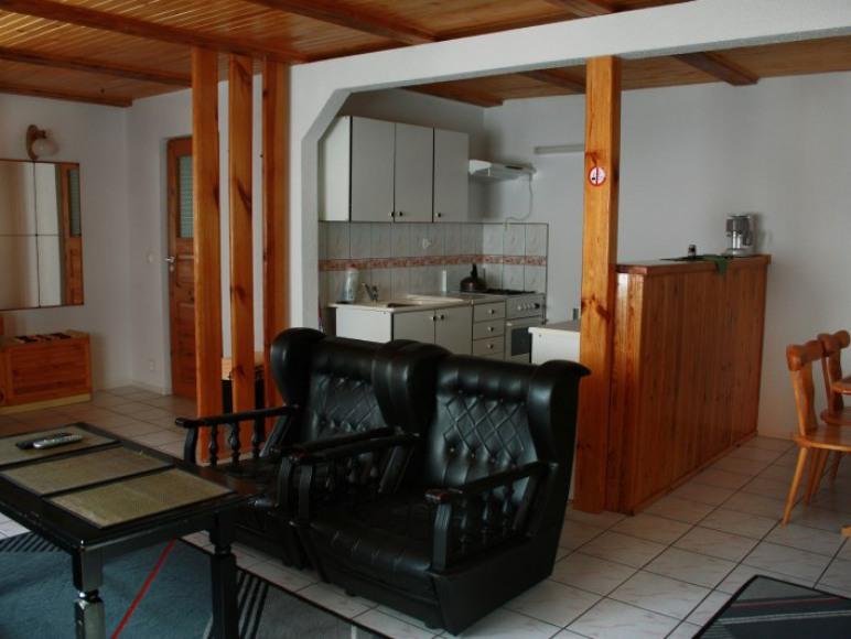 Apartament - salon dzienny z kominkiem