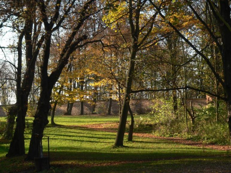 Park dworski do dyspozycji gości