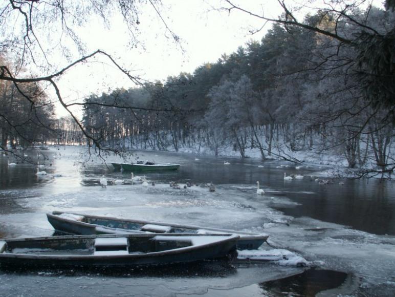 Nad rzeka Brdą