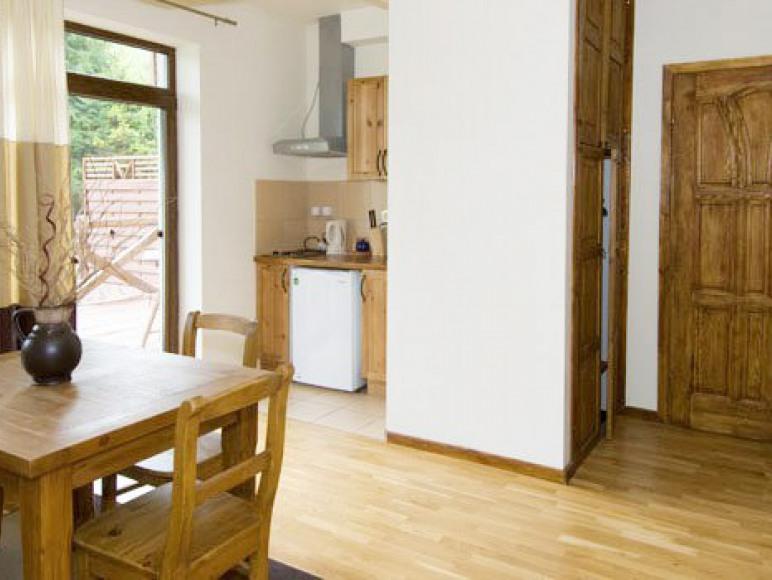 Apartament z aneksem kuchennym - pokój dzienny