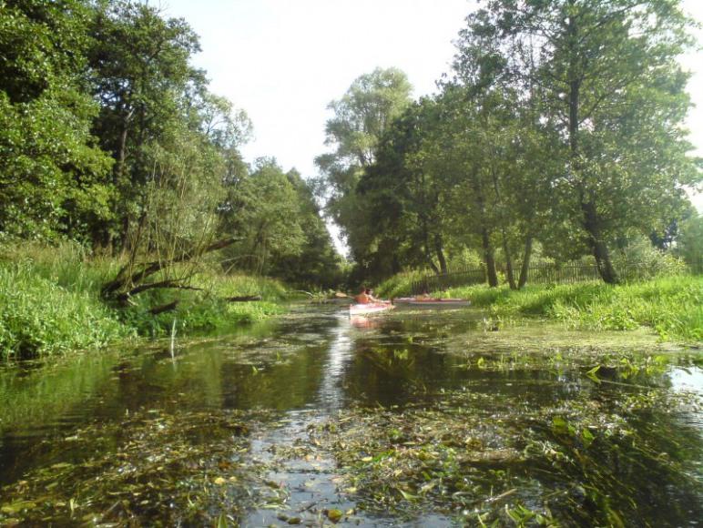 Spływy Kajakowe ,Pole Namiotowe, Mazury