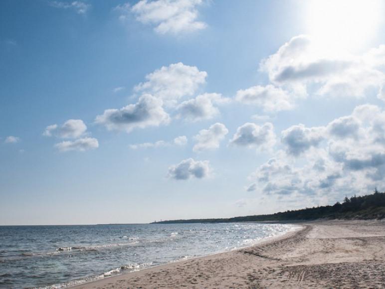 plaża dźwizryno