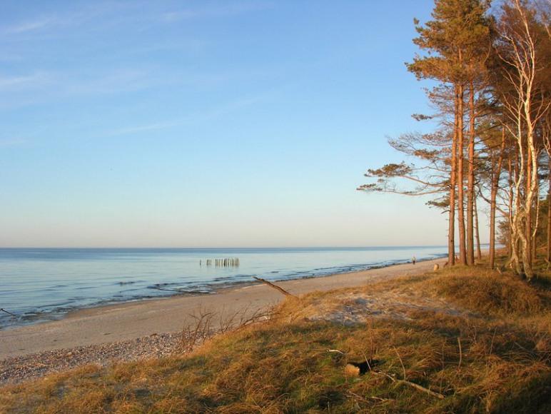 plaża dźwirzyno