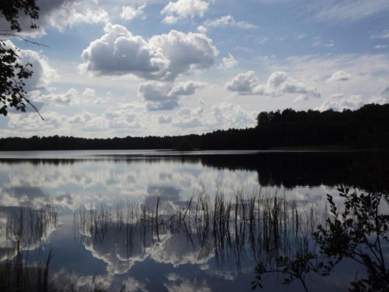 Rezerwat Przyrody Jezioro Kiełpino