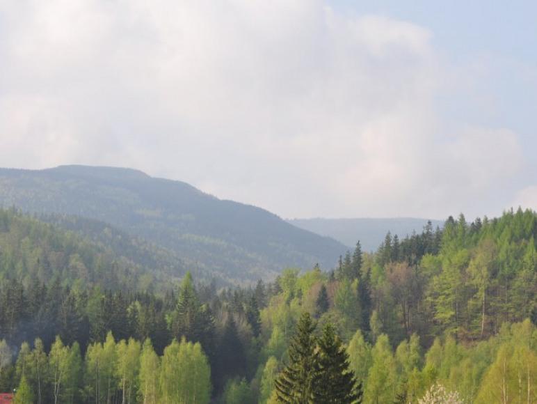 Widok z tarasów
