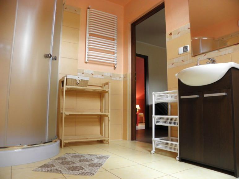 Apartament na Międzygórze - łazienka.