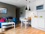 Apartament Delux- Salon z funkcją dwuosobowego spania