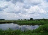 Rzeka Narew (50 m)