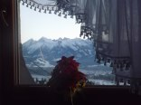 widok z okna pokój 3 os.