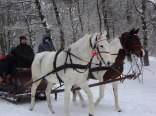 Zimą organizujemy kuligi
