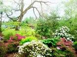 Ogród Botaniczny Wirty