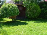 Ogródek z altaną