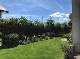 Domek nr 1-ogród