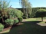 ogród na tyłach domu