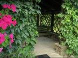 Letni Domek u Małgorzaty