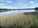 Widok z działki na jezioro.