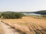 Domek nad Drwęcą, stawy rybne, jezioro, grzyby