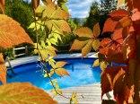 Basen jesienią