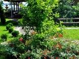 Ogród (dojście do jeziora Miedwie)