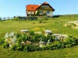 Agroturystyka - wypoczynek pod Kamieńcem