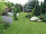 część ogrodu