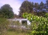 Domek holenderskiwsród krzewów aroni i grusz.