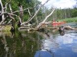 Spływ Krutynią