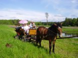 Mariola Buryta - gospodarstwo agroturystyczne