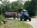 Gospodarstwo Agroturystyczne Wójtostwo