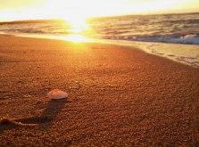 Pokoje nad morzem:)