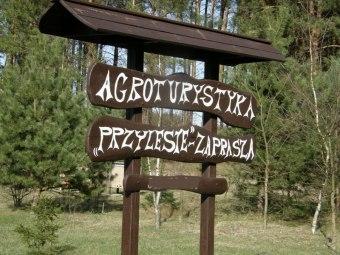 """Gospodarstwo Agroturystyczne - """"Przylesie"""""""