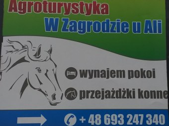 Agroturystyka w zagrodzie u Ali