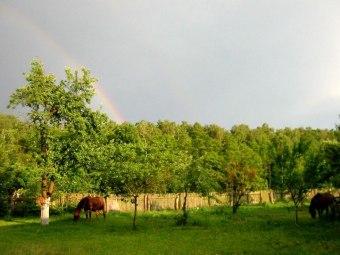 Gospodarstwo Agroturystyczne Alicja Okrasa