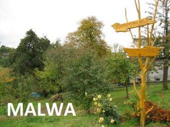 Gospodarstwo Agroturystyczne MALWA
