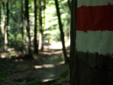 Szlak czerwony