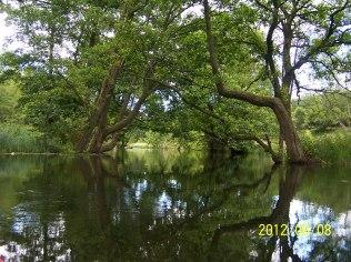 """Spływy kajakowe rzeką Radunią - Pokoje Agroturystyczne """"U Hani"""""""